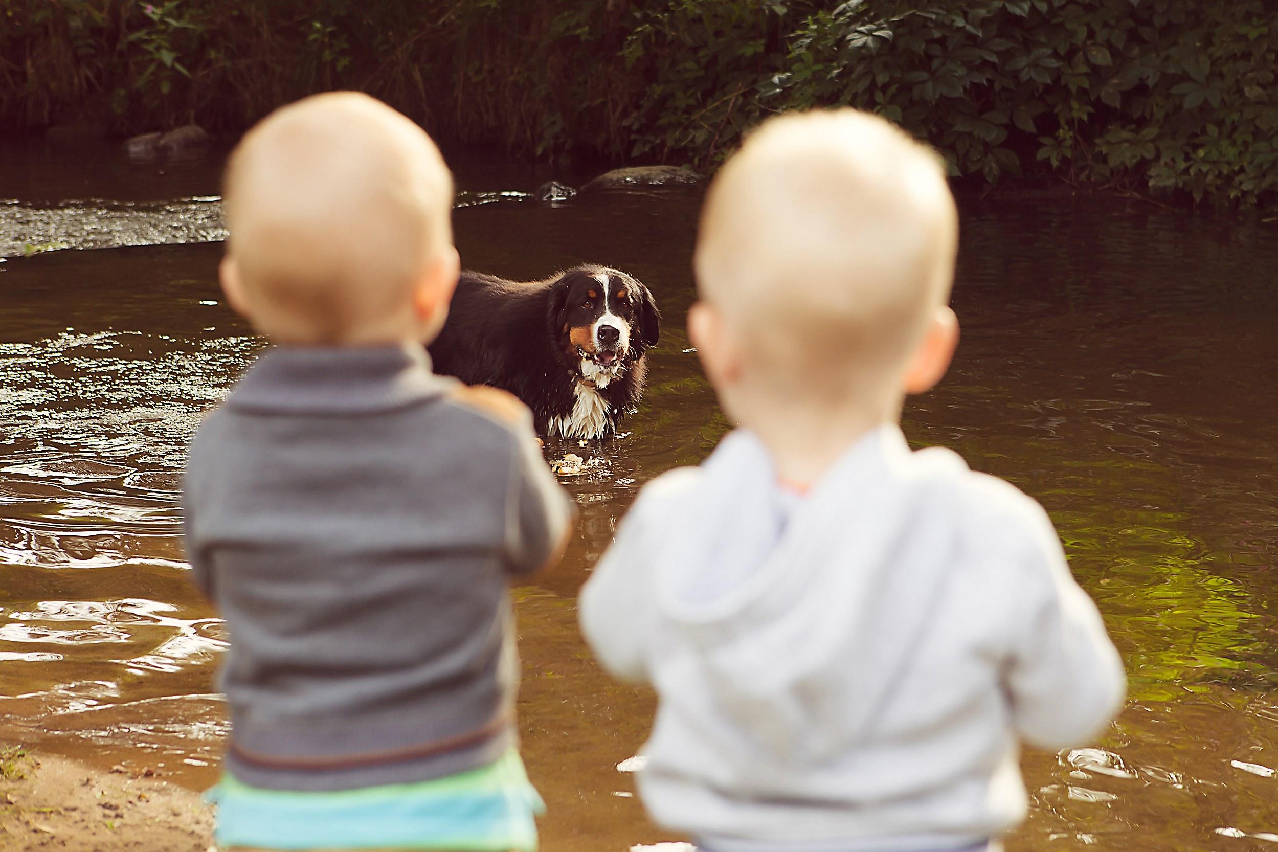 Kid's Afraid of Dogs
