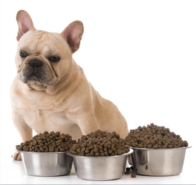 Bulldog Nutrition